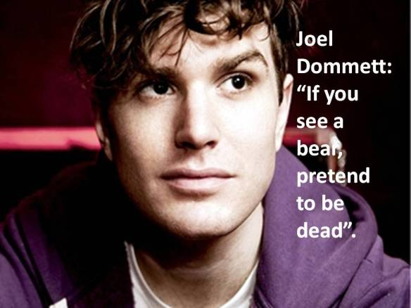 Joel Dommett